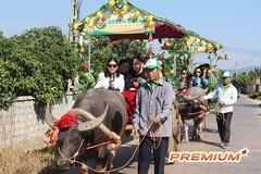 Vùng vải nghìn tỷ ở Bắc Giang làm du lịch miệt vườn