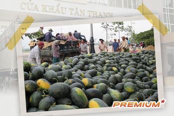 Trung Quốc ngày càng khó tính và lời cảnh báo cho nông nghiệp Việt Nam