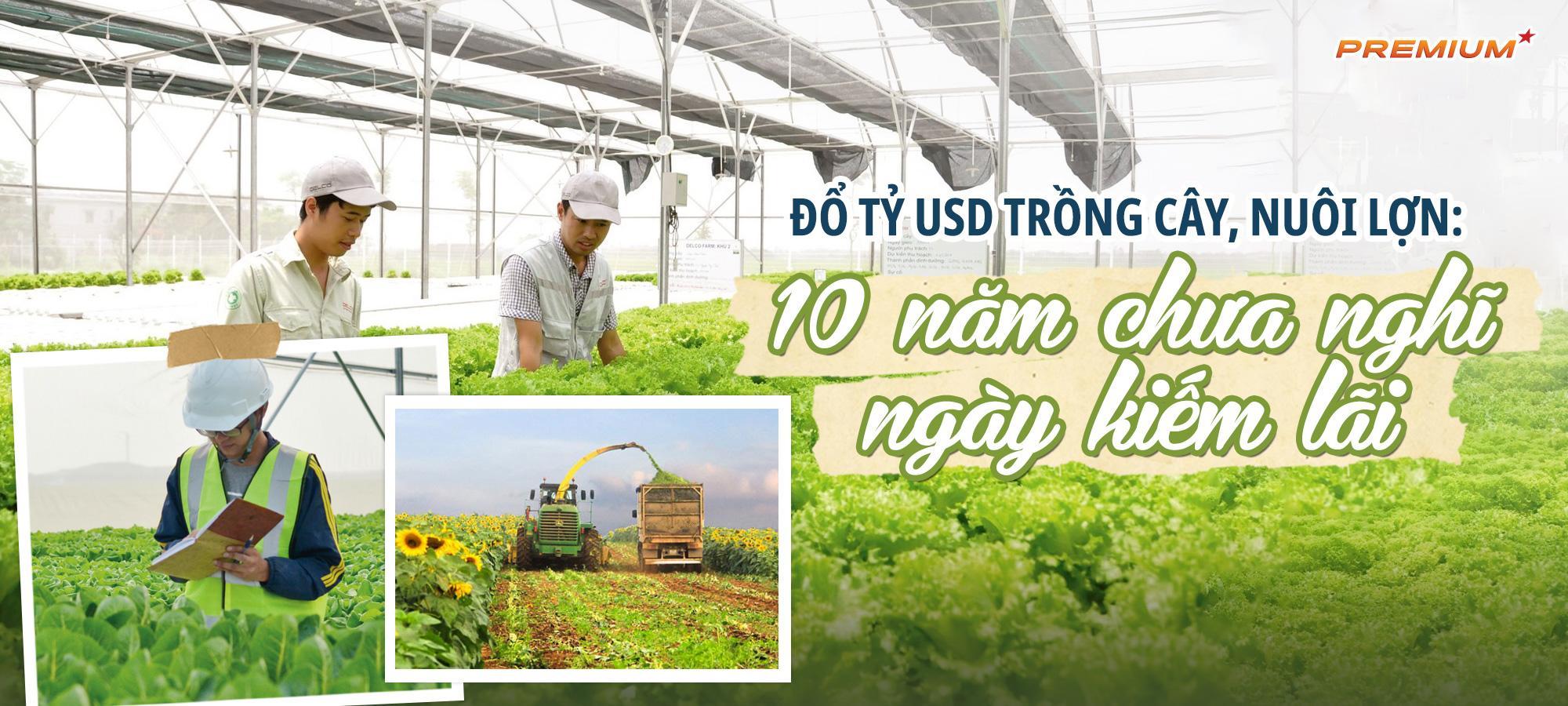 Đổ tỷ USD trồng cây, nuôi lợn: 10 năm chưa nghĩ ngày kiếm lãi