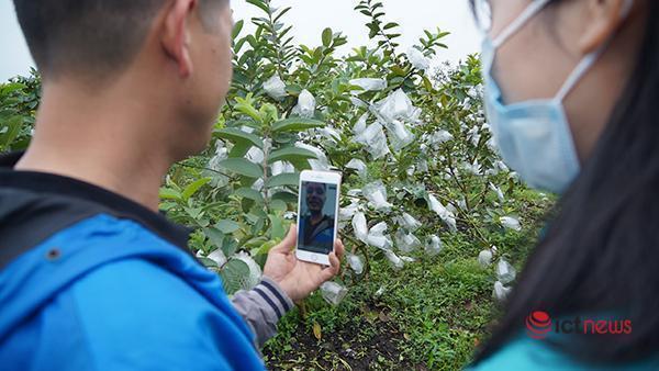Người Việt có thể kiếm tỷ USD nhờ kinh tế livestream-4