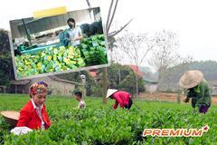 """Cuộc """"xuất khẩu"""" tinh thần làm giàu bền vững cho nông dân"""